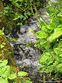 RGBE Rock Garden Water feature 002.JPG