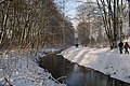 Rahlsteed - Berner Au Wanderweg.jpg