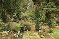 Ratingen Breitscheid - Langenkamp - Evangelischer Waldfriedhof 02 ies.jpg