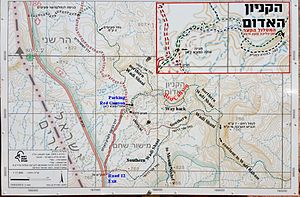 Negev – Travel guide at Wikivoyage