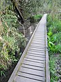 Reed Canyon, Portland, Oregon (2013) - 17.JPG