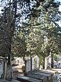 Rehovot Old Cemetery.JPG