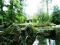 Reka Gradac 2.jpg