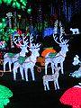 Renos Navidad San Diego 2013 Edo Carabobo.JPG