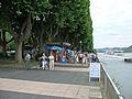 Rheinanlagen 04 Koblenz 2008.jpg