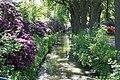 Rhododendronpark Bremen 20090513 019.JPG