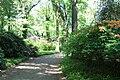 Rhododendronpark Bremen 20090513 055.JPG