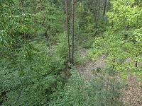 Ringbahnbrücke Erlenstegener Forst SAM 5591.JPG