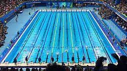 Natación Deporte Wikipedia La Enciclopedia Libre