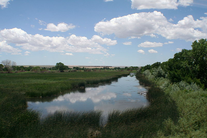 File:Rio Grande River marshes.JPG