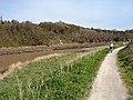 River Avon at Horseshoe Point - geograph.org.uk - 395569.jpg