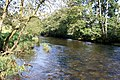 River Barle near Worth - geograph.org.uk - 967833.jpg