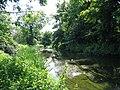 River Crane, Crane Park - geograph.org.uk - 90196.jpg