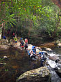 River Crossing Near Kuala Juram, Gunung Tahan.jpg