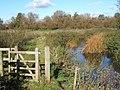 River Gipping footpath - geograph.org.uk - 598563.jpg