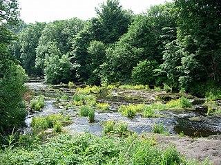 River Gryfe river in the United Kingdom