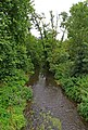 River Mole - geograph.org.uk - 2137225.jpg