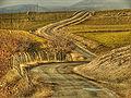 Road-05878.jpg