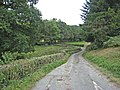 Road to Pentre-cyffin - geograph.org.uk - 560550.jpg