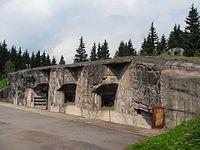 Rokytnice v Orlických horách, Horní Rokytnice, R-S 79 (rok 2010; 05).jpg