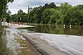 Roman Forest Flooding - 4-18-16 (26488933306).jpg