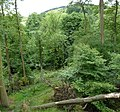 Roughlee Booth, UK - panoramio (6).jpg