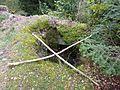 Ruine Steuerberg Loch.jpg