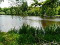 Ruisseau Forges Le Bourdeix étang Forges.JPG