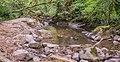 Ruisseau d'Audiernes 04.jpg