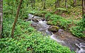 Ruisseau des Palanges (8).jpg