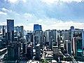 São Paulo, Brazil (2).jpg