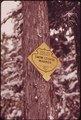 SOIL CONSERVATION SERVICE SIGN AT TILLY JANE CAMPGROUND ON MT. HOOD. FEDERAL AND STATE COOPERATIVE SNOW SURVEYS ARE... - NARA - 548159.tif