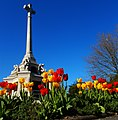 SUTTON War Memorial and Spring tulips, Sutton, Surrey, Greater London - Flickr - tonymonblat.jpg