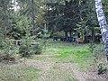 SYBIR cz.wsi PASIEKI, woj.lubelskie. AB-035.jpg