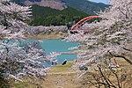Sada no Sakura.JPG
