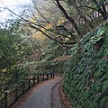 Sagatenryuji Susukinobabacho, Ukyo Ward, Kyoto, Kyoto Prefecture 616-8385, Japan - panoramio (11).jpg