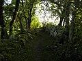 Salers , pays de pierre et de grands espaces, situé entre Dordogne et Puy-Mary - panoramio (23).jpg