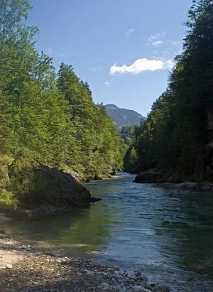 Salza (Enns) - River Salza near Palfau