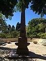 San Anton Garden spots 30.jpg