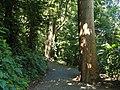 San Juan Botanical Garden - DSC07015.JPG