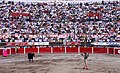 San marcos bullfight 04.jpg