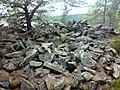 Sandbukta-Ersvika 180720087062.jpg