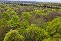Schönstedt, Nationalpark Hainich, Ausblick vom Baumkronenpfad -- 2017 -- 0218.jpg
