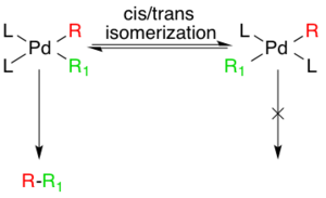 Generation of active species via cis/trans isomerism