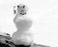 Schneemann auf 3.000 Meter Höhe.jpg