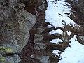 Schody na Vejrov.JPG
