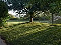 School grounds, Barton Road - geograph.org.uk - 1321692.jpg