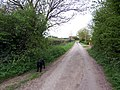 Scrub Lane, East Halton - geograph.org.uk - 165172.jpg