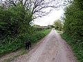 Scrub Lane, East Halton - geograph.org.uk - 165172.jpg