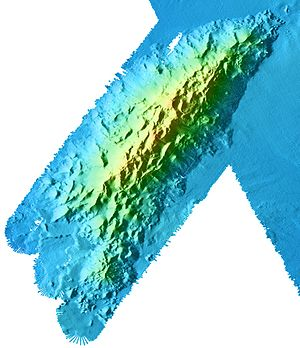 Davidson Seamount - Image: Seamont Davidson full bathymetric